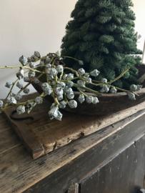 Eucalyptus klokjes 1 bosje gaat per gewicht