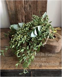 Dadeltak met wat Eucalyptus soortjes