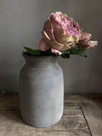 English Rose 55 cm