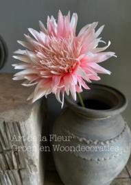 Gerbera Wild  Roze 50 cm