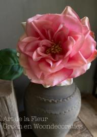 Wildrose Roze  57 cm