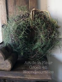 25 tak wilde Asparagus ( vol pak )