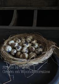 Nest 21 cm incl 40 kwarteleitjes