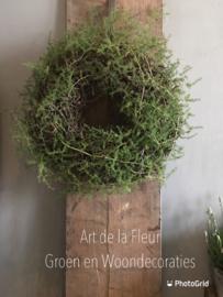 Bonsai / Asparagus krans 45 cm doorsnede