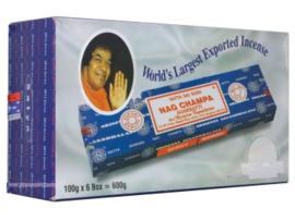 Nachampa 40 grams groot verpakking    12 stuks