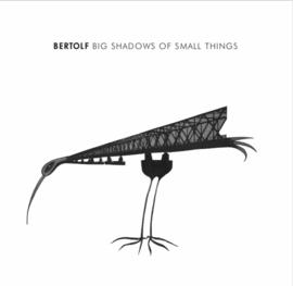 Big Shadows of Small Things (CD) (2019)