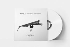 Big Shadows of Small Things  (LP + CD) 2019