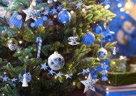 Ga je voor kerstballen of kerstornamenten?