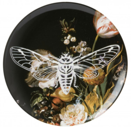 Wandbord Nachtvlinder - 26 cm