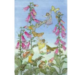 Molly Brett kaart Fairies & Foxgloves