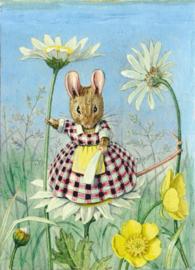 Molly Brett kaart Mouse On Ox-Eye Daisy