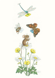 Molly Brett kaart Dragonfly And Butterfly Bringing Gifts To Mouse