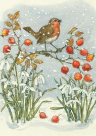 Molly Brett kaart 'Robin and Rosehips'