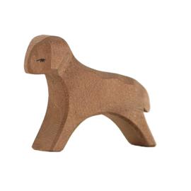 Ostheimer lam lopend bruin