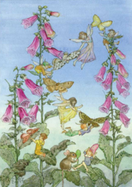 Molly Brett kaart fairies and foxgloves