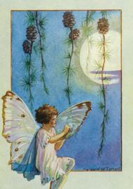 Margaret W. Tarrant kaart Larch Fairy