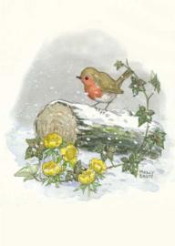 Molly Brett kaart 'Winter Robin'