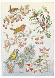 Molly Brett kaart 'Five different birds on five different branches'