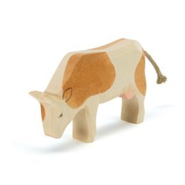Ostheimer koe bruin etend