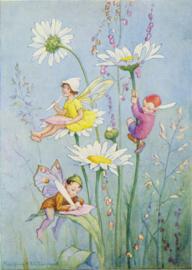 Margaret W. Tarrant kaart Joan in Flowerland