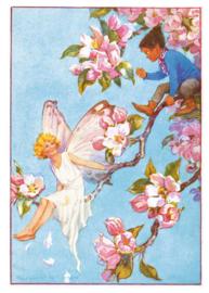 Margaret W. Tarrant kaart apple blossom