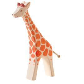 Ostheimer giraffe groot lopend