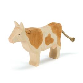 Ostheimer koe bruin staand
