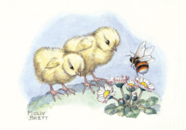 Molly Brett kaart two chicks and a bee