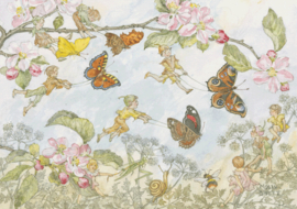 Molly Brett kaart The butterfly Race
