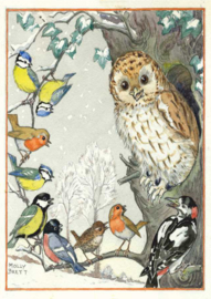 Molly Brett kaart 'An owl and other birds'
