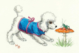 Molly Brett kaart Poodle looking at a grasshopper on a toadstool