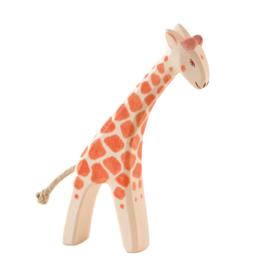 Ostheimer giraffe klein buigend