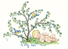 Molly Brett kaart Baby under a goosberry bush