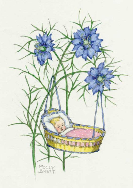 Molly Brett kaart New baby