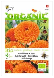 Organic Calendula, Goudsbloem Ball's Orange (BIO)