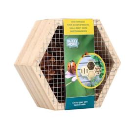 Hexagon Lieveheersbeestjes