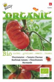 Organic Tomaat Marmande (BIO)