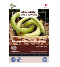 Bijzondere groente  Ornamental Gourd Italian Edible/Cucuzi