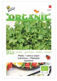 Organic Pluksla Salad Bowl, groen (BIO)