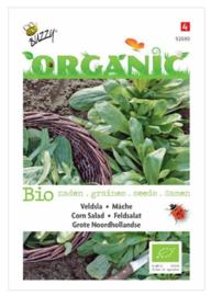 Organic Veldsla Grote Noordhollandse (BIO)