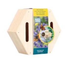 Hexagon Vlinders