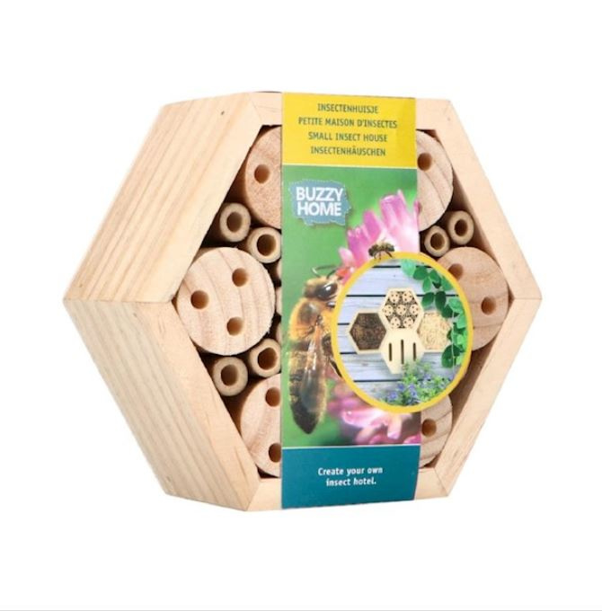 Hexagon Bijen