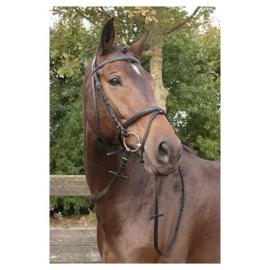 Harry's Horse Hoofdstel Bronze (gecombineerde neusriem)