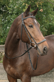Harry's Horse Hoofdstel Bronze (lage neusriem)