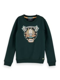 Sweater crewneck with embroidery, Scotch R'Belle