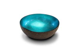 Turquoise bladmetaalkleurige kokosnootkom