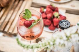 Geschenkkist Pink Gin & tonic