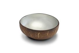 Zilver metaalkleurige kokosnootkom