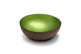 Groen metaalkleurige kokosnootkom