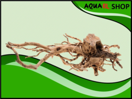 Root Driftwood Extra Large - Aquarium decoratie hout spiderwood